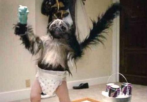 puppy-monkey-babyjpg-d1cde07fec572842