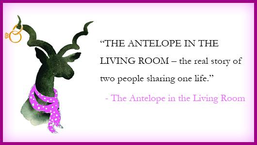antelop-pinterest-q4